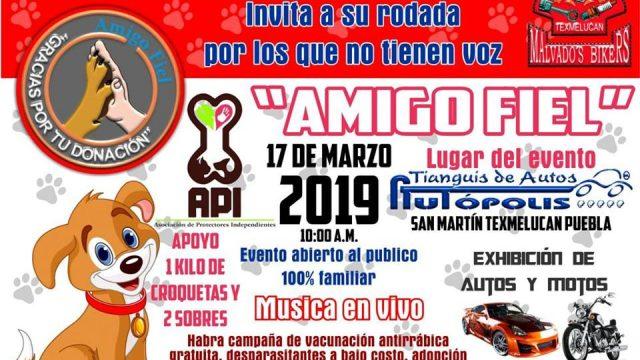 1 er rodada »POR LOS QUE NO TIENEN VOZ» – Puebla