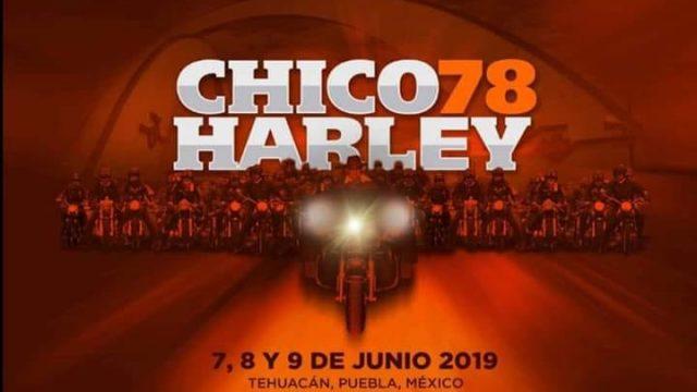 CHICO HARLEY 2019