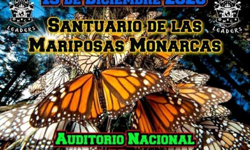 Rodada al Santuario de la Mariposa Monarca